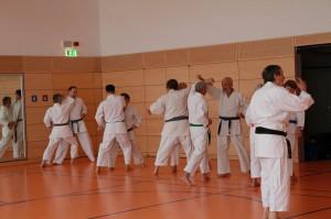 2016 04 Karatelehrgang 177