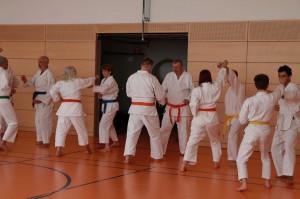2016 04 Karatelehrgang 178