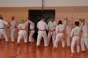 2016 04 Karatelehrgang 179