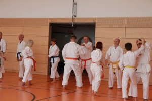 2016 04 Karatelehrgang 180