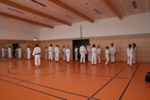 2016 04 Karatelehrgang 183