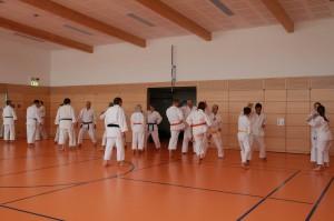 2016 04 Karatelehrgang 186