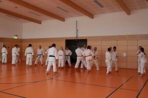 2016 04 Karatelehrgang 187