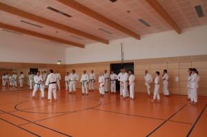 2016 04 Karatelehrgang 192