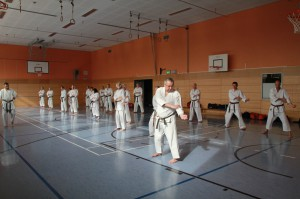 2016 04 Karatelehrgang 193