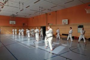 2016 04 Karatelehrgang 200