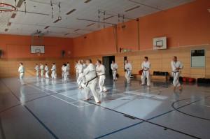 2016 04 Karatelehrgang 208
