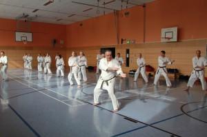 2016 04 Karatelehrgang 210