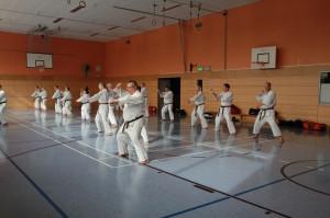 2016 04 Karatelehrgang 214