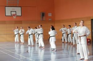 2016 04 Karatelehrgang 224