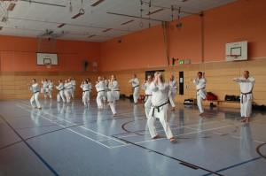 2016 04 Karatelehrgang 235