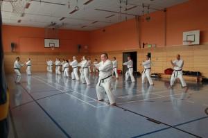 2016 04 Karatelehrgang 251