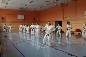 2016 04 Karatelehrgang 254