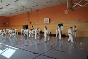 2016 04 Karatelehrgang 34