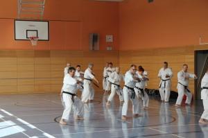 2016 04 Karatelehrgang 35
