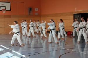2016 04 Karatelehrgang 36