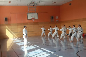 2016 04 Karatelehrgang 38