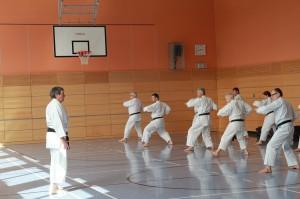 2016 04 Karatelehrgang 39