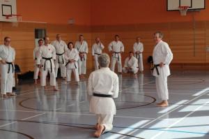 2016 04 Karatelehrgang 41