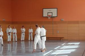 2016 04 Karatelehrgang 43