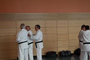 2016 04 Karatelehrgang 52