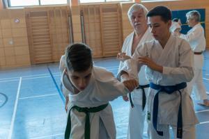 2018 11 Karate Lehrgang 17