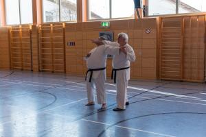 2018 11 Karate Lehrgang 75